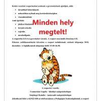 Tigris csoport_v2_betelt