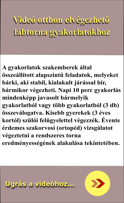 labtorna_v1